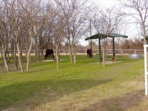 Brockdale Park Trail head